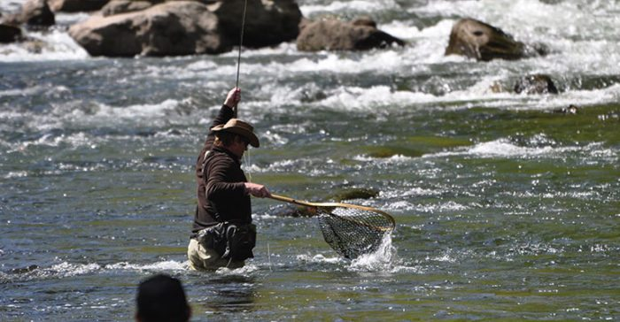 angler in a stream with a fishing net