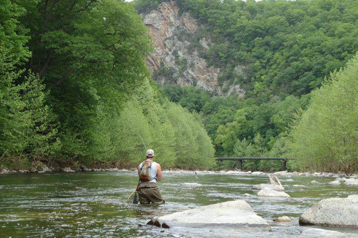 Can 39 t miss spring fishing in west virginia official for Trout fishing in wv