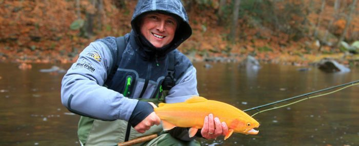 West Virginia Trout Fishing - Trophy Trout Fishing At Harman's Log