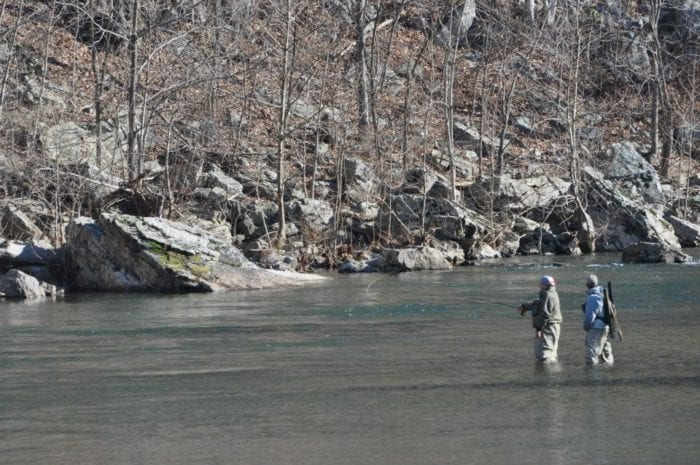 fishermen casting in the north fork river for fly fest at harman's log cabins
